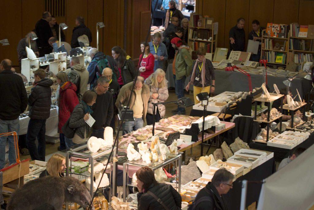 Suchen, finden und entdecken aus der Messe für Fossilien.