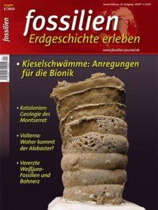 """Cover of the magazine """"FOSSILIEN - Erdgeschichte erleben"""""""