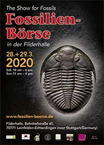 Poster for the Fossils Show 2020 known as Fossilien Boerse