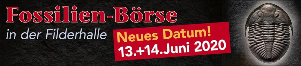 Neuer Sommer Termin für die Fossilienbörse am 13-14.06.2020.