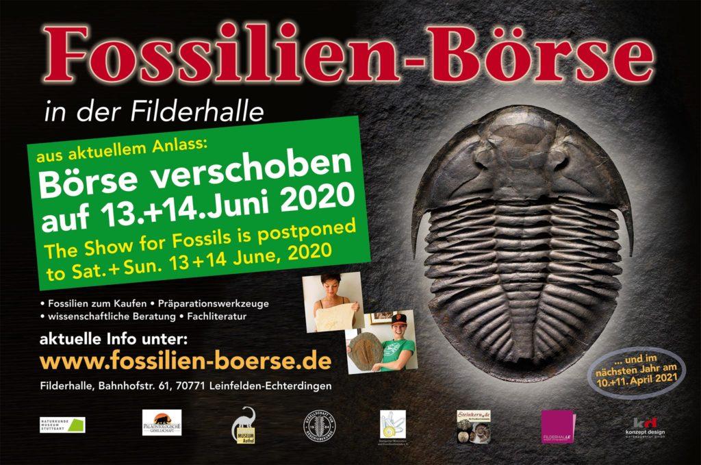 Fossilien-Börse 2020 Termin im Sommer