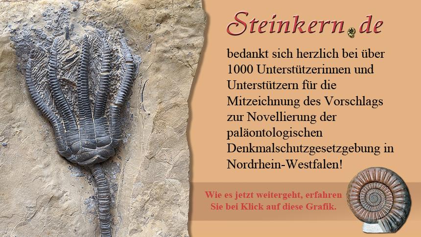 Steinkern.de Novellierung der paläontologischen Denkmalschutzgesetzgebung in Nordrhein-Westfalen
